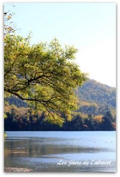 湯の湖1.JPG